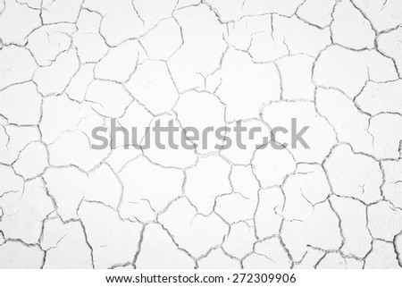Dried and Cracked ground - stock photo
