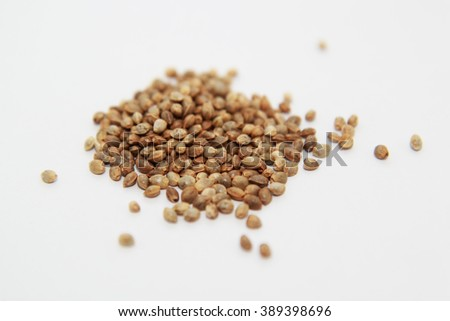 Dried Cannabis Hemp seeds isolated on white background - stock photo