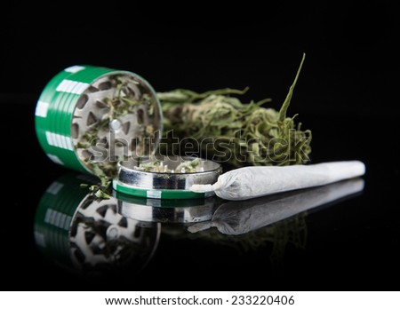 Dried cannabis plant, marijuana on black background - stock photo