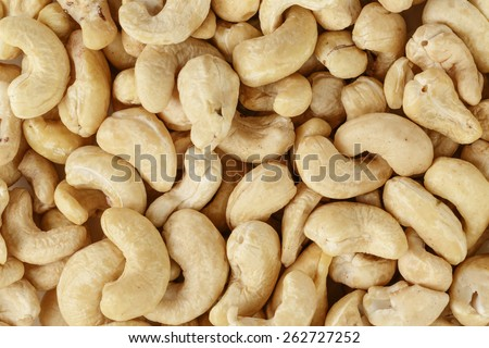 dried cashews nuts background - stock photo