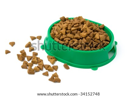 Dried cats food. White background. Close-up.