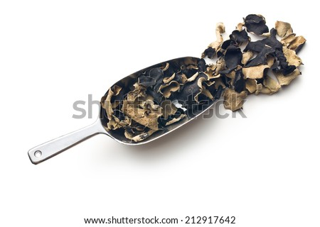 Dried chinese black fungus. Jelly ear on white background.