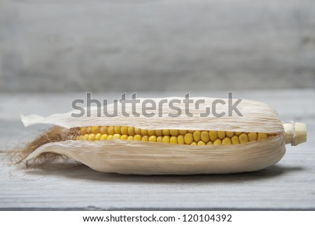 Dried corn ear on an old wooden background