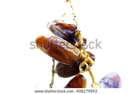 Dried date palm on white background:Close up,select focus with shallow depth of field:Macro shot. - stock photo