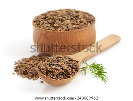 dried dill seeds isolated on white background - stock photo