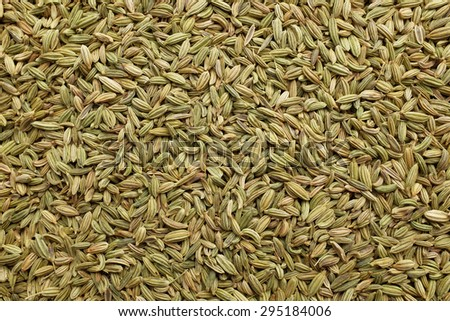 Dried fennel seeds as an abstract background texture - stock photo