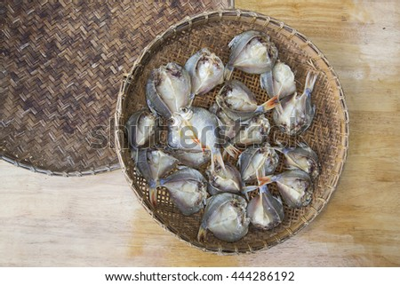 dried fishes on a basket - stock photo
