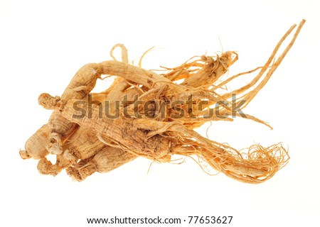 Dried Ginseng Roots Isolated On White Background - stock photo