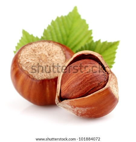 Dried hazelnuts with leaves - stock photo