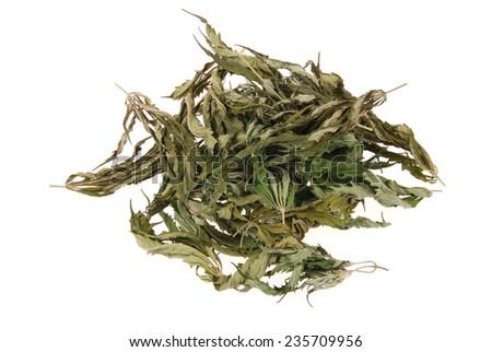 Dried hemp (cannabis) isolated on white background - stock photo