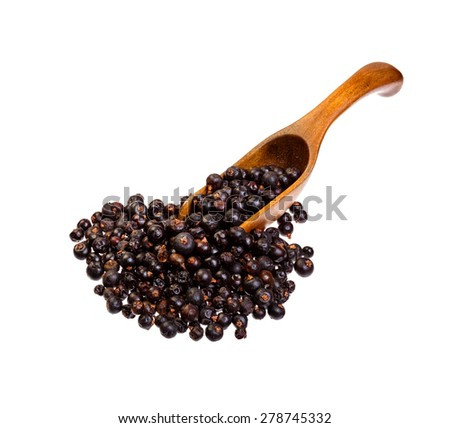 Dried Juniper berries on the wooden spoon. - stock photo