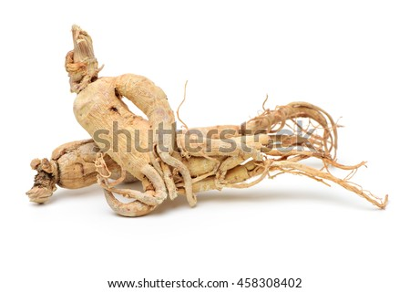 Dried Korean Ginseng on white background