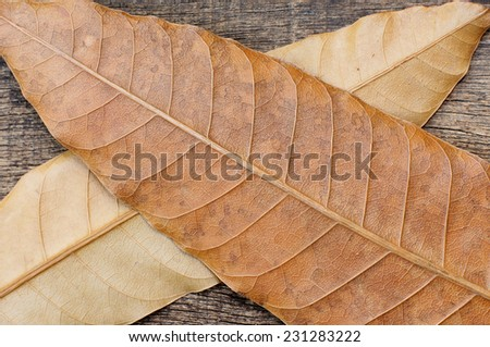 dried leaf cross position in the old cracked wooden background - stock photo
