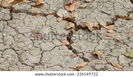 Dried leafs fallen on cracked earth or soil for textured landscape background - stock photo