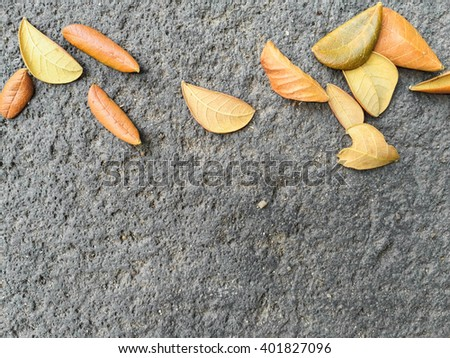 dried leaves on concrete floor. - stock photo