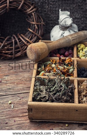 Dried medicinal herb.Useful dried herbs for making teas in rustic style.