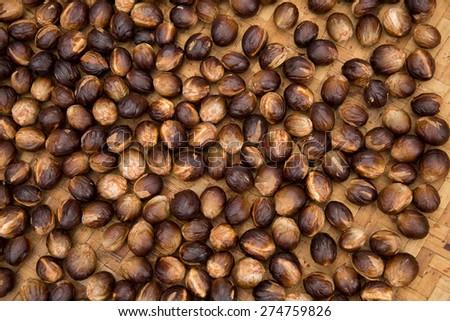 Dried nutmeg seeds - stock photo