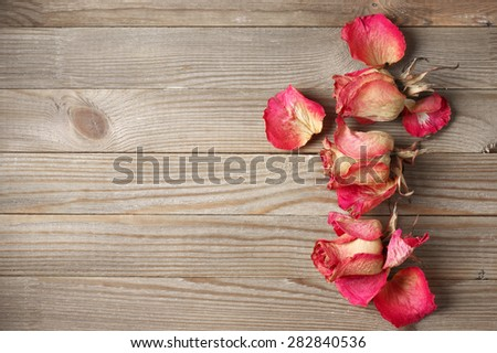 Dried pink roses heads and petals on rustic wooden background with copy space. Top view point. - stock photo