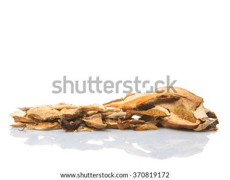 Dried porcini mushroom over white background