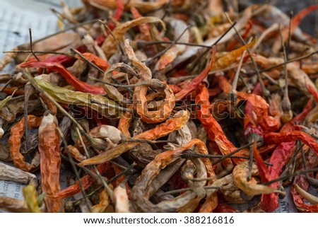 Dried red chille peppers