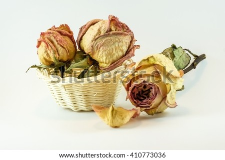 Dried rose in white basket on white background - stock photo