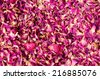 Dried rose petal for background. - stock photo