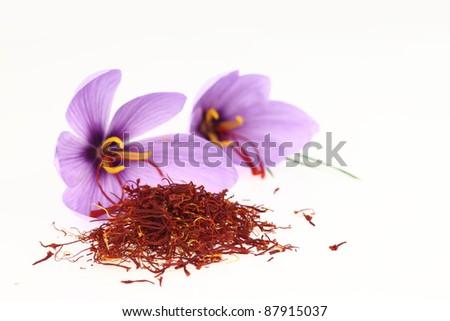 Dried saffron spice and Saffron flowers - stock photo