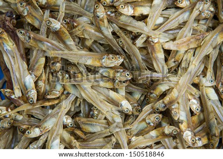 Dried Small fish used in Asian cuisine