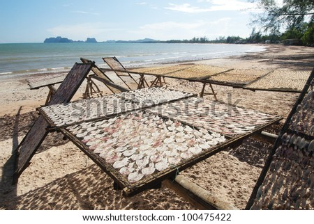 dried squid on the beach - stock photo