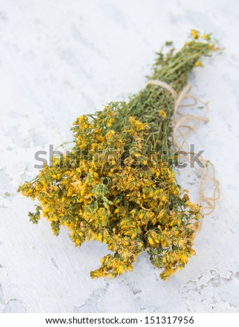 Dried St. John's wort plant on the shabby wooden background - stock photo