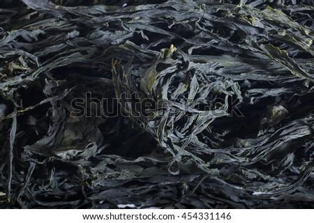 dried wakame - stock photo