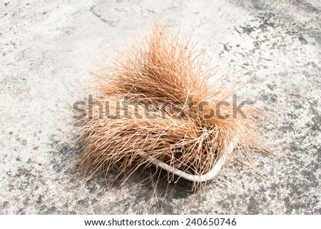 Dried wheat grass on cement floor - stock photo