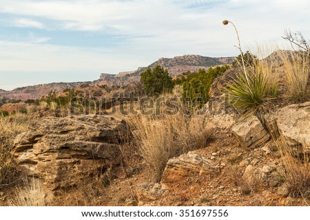 Dried yucca plant reaching above horizon and surrounded by large boulders, arid cliffs and juniper brush in Palo Duro Canyon in Texas High Plains Panhandle. - stock photo