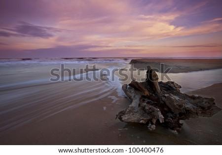 Drift wood and sunset over sandy beach - stock photo