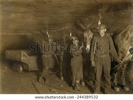 Drivers and Mules with young laborers in a West Virginia coal mine. October 1908 photo by Lewis Hine. - stock photo