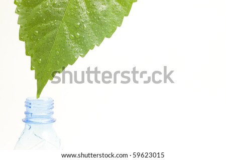 drop from leaf to bottle - stock photo