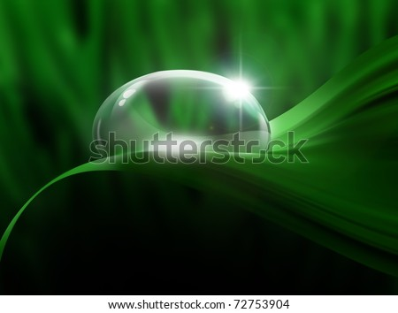 drop of dew on a green leaf close up - stock photo
