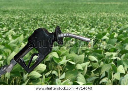 drop of fuel from a gasoline nozzle with soybean field in background - stock photo