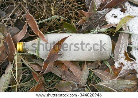 Dropped frozen bottle on the frozen leaves.  - stock photo