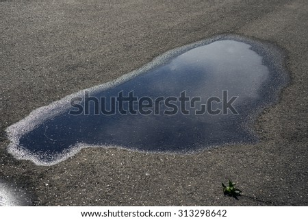 Drops of rain water on a fresh asphalt in the sun. - stock photo