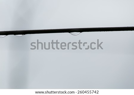 drops of water hanging on a rope. macro - stock photo