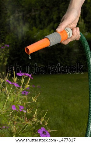 Drought! A hosepipe with just a drip of water coming out of the nozzle. Space for text on the dark background, framed by the pipe. - stock photo