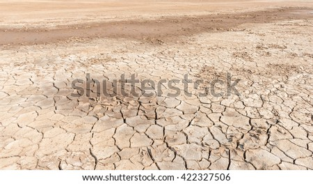 drought land - stock photo