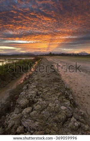 Drought land by the paddy field during beautiful sunset. Composition of nature