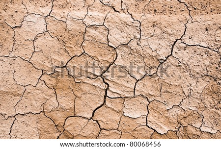 Drought on the ground - stock photo