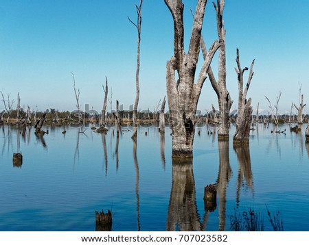 Weir farm stock images royalty free images vectors for Fish river tree farm