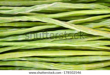 Drumstick Vegetable or Moringa - stock photo