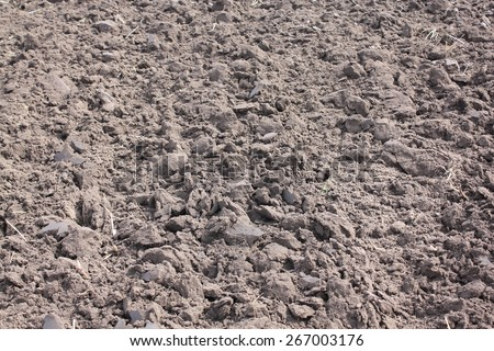 Dry agricultural brown soil detail natural background, soil dirt texture surface with some fine grain in it under bright sunlight - stock photo