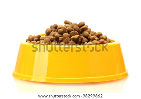 dry cat food in yellow bowl  isolated on white - stock photo