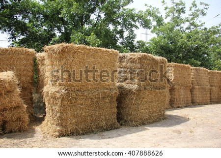 dry, compressed straw